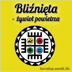 bliznieta-zywiol